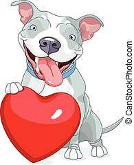 Valentine Pit Bull Dog - Illustration of Cute Pit Bull Dog...