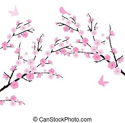 Cherry - vector cherry blossom branches with birds