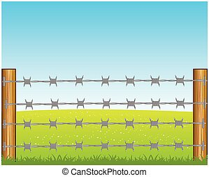 Poles with barbed wire - The Year field and poles with...