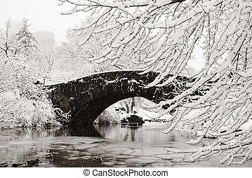 Central Park winter with stone bridge in midtown Manhattan...