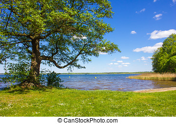 Lake with Shore - Peaceful Lakeshore in Germany