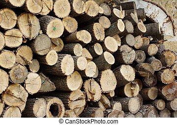Woodpile. Background and Texture for text or image