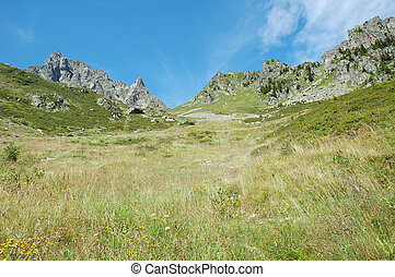Meadow on hillside and peaks nearby Chamonix in France -...