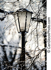 Street lantern in winter snowy city park Seasonal concept