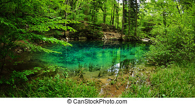 beautiful pond in the woods, Caras Severin county, Romania
