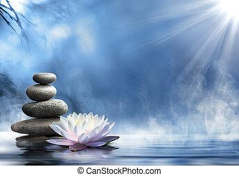 pureza, de, a, Zen, massagem,