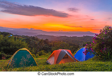 Camping tent in campground at national park with sunrise.