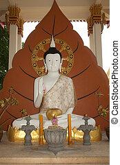 White sitting buddha .