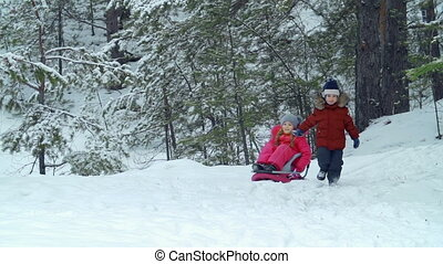 Friends in the Woods - Little boy pulling sled with his...
