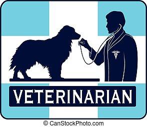 gráfico, veterinario, perro