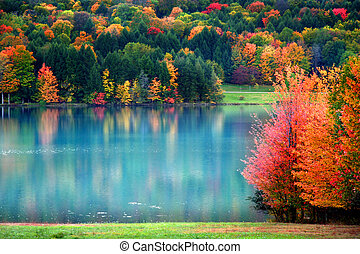 Scenic Autumn landscape - Colorful trees in Allegheny...
