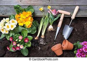 jardinería,