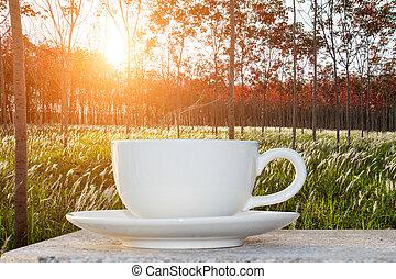 café, Levers de Soleil, matin