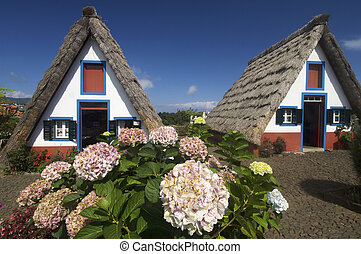 houses in Madeira island - View of typical houses in...