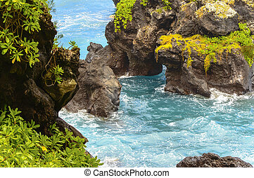 Maui Rugged Coast - The volcanic roack contrasts the lush...