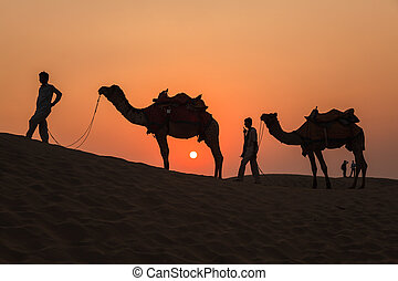 Camels and Sunset at Thar Desert in Jaisalmer, Rajasthan,...
