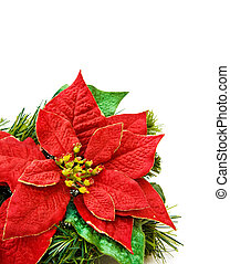 Christmas red flower decoration - Christmas red flower and...