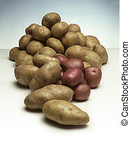 Pile of Potatoes - A pile of various types of potatoes
