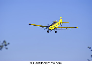 Airplane spraying insecticide on a cornfield