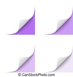 Curled Corner - Curled White Paper Corner with Purple...