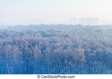 early morning over frozen forest and city