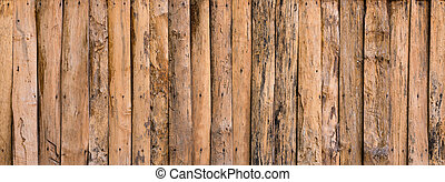 detail of wood texture decorative - background pattern...