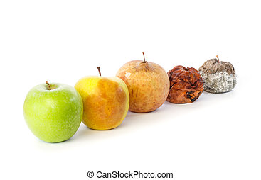 Five apples in a row in various states of decay against...