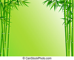 Bamboo Forest - Bamboo forest