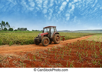 tractor and plow in field