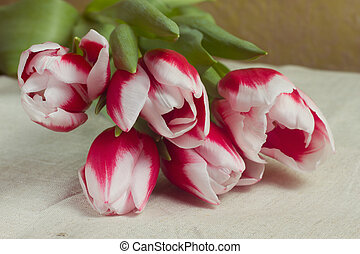 Bouquet of red tulips in multiples of parchment