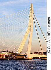 Erasmus Bridge in Rotterdam Rotterdam, South Holland,...