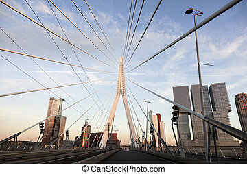 Driving on Erasmus Bridge - Driving on Erasmus Bridge....