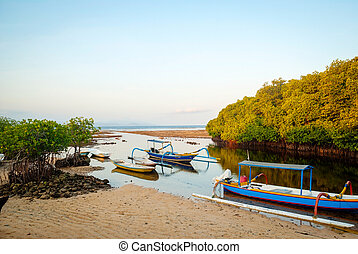 Mangrove forest at Nusa Lembongan island, Indonesia -...