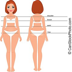 Women sizes measurements - Stock vector cartoon illustration...