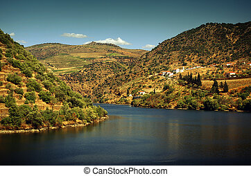 Douro Landscape II - Beautiful landscape of the Douro...