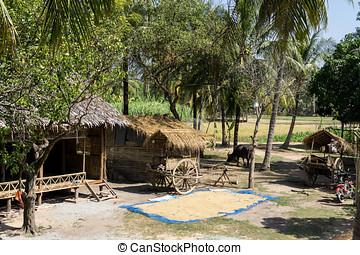 Cambodian farm - Cambodian country farm scenery near Siem...