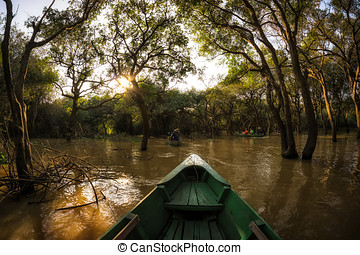 Tonle Sap Mangrove Forest river boat tour
