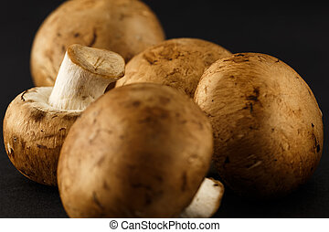 Agaricus silvaticus also known as Scaly Wood Mushroom,...