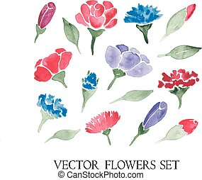 vector set of watercolor flowers and leaves