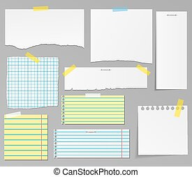 Vector set of paper objects for you
