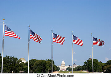 Washington DC - US Flags and the Capitol in the Background