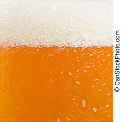 beer foam glass isolated on white background