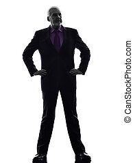 senior business man silhouette
