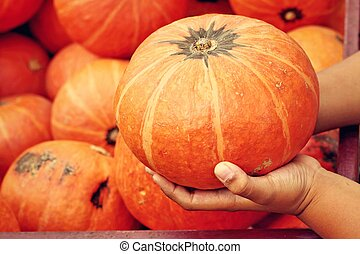 Pumpkins - Children hugging a pumpkin in a pumpkin patch.