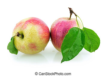 two apples isolated on white background