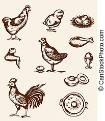 Chicken and eggs - Set of vintage hand drawn chickens and...