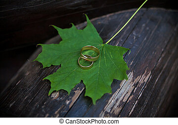 Wedding rings on green maple leaves with brown wood...