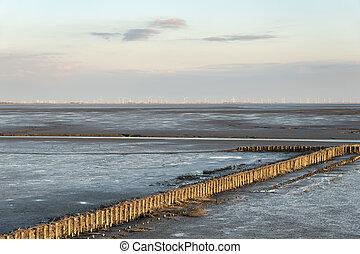 mudflat landscape - Image of mudflat landscape with wooden...