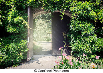 Old wooden gate with lianas. Entrance to the park