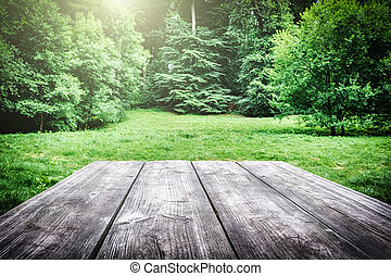 Wooden picnic table in forest - Wooden picnic table with...